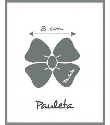 Medidas coletero cuadros de vichy marrón P1635-51
